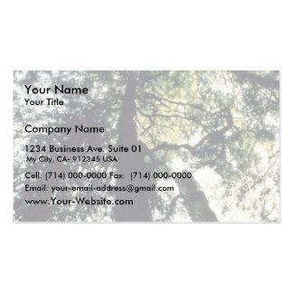 Godshawk Business Card