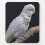 Goffin's Cockatoo Mousemat Mouse Pad