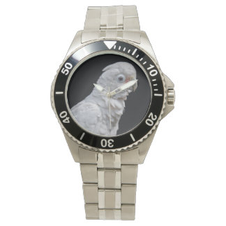 Goffin's Cockatoo Watch