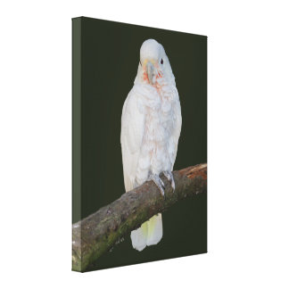 Goffy Wrapped Canvas Print