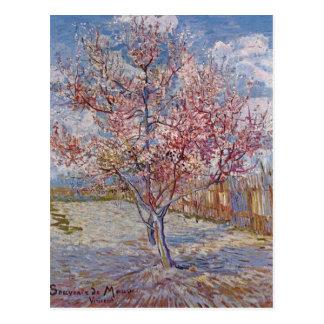 Gogh reminiscencia de color de malva o de Vincent Tarjeta Postal