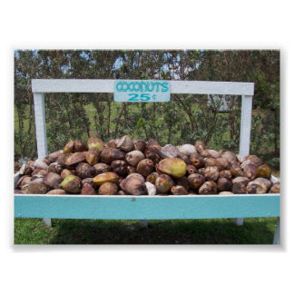 Going Coconuts Poster