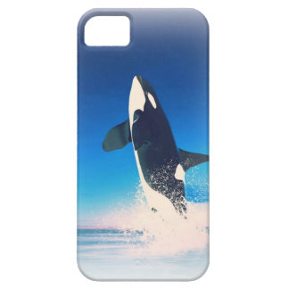 Going for the Breach Killer Whale iPhone 5 Case