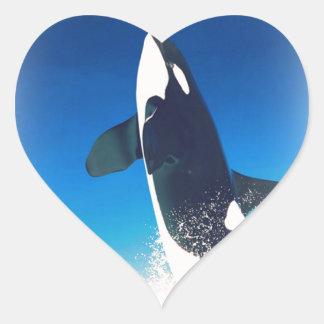 Going for the Breach Killer Whale Heart Sticker