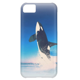 Going for the Breach Killer Whale iPhone 5C Cover