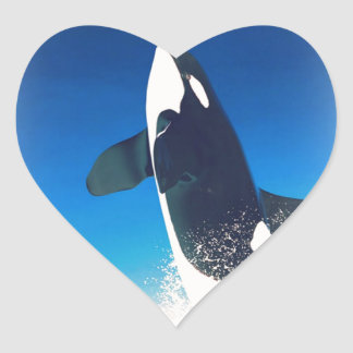 Going for the Breach Killer Whale Heart Stickers