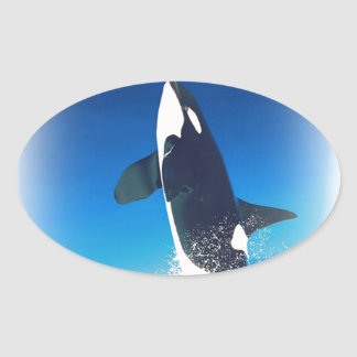 Going for the Breach Killer Whale Oval Sticker