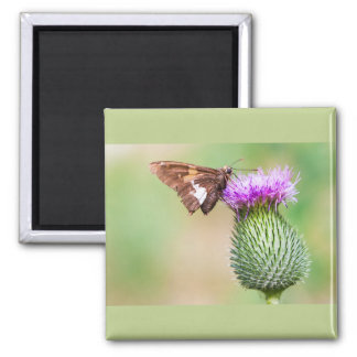 going horizontal on a vertical 2 inch square magnet