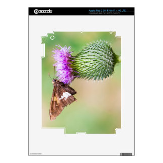 going horizontal on a vertical iPad 3 skins