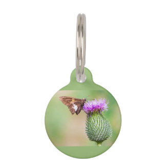 going horizontal on a vertical pet tag