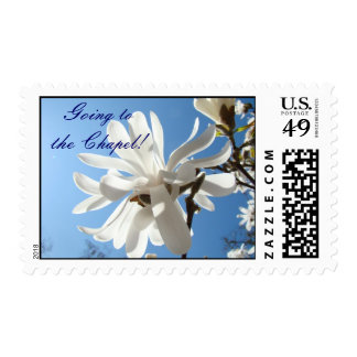 Going to the Chapel! Wedding postage Invitations