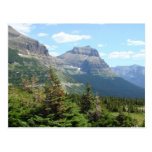 Going to the Sun Road Postcard