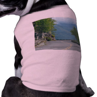 Going to the Sun Road Shirt