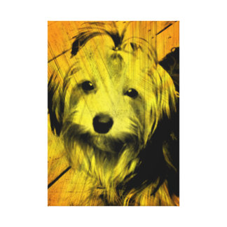 Gold Amber Grunge Yorkshire Terrier Wall Art Stretched Canvas Prints