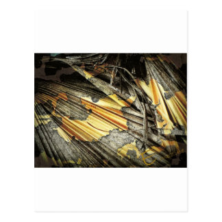 Gold And Black Abstract Postcard