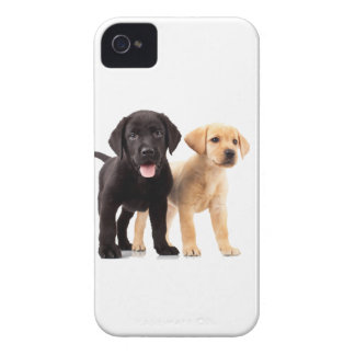 Gold and Black Labrador Puppies iPhone 4 Case-Mate Cases