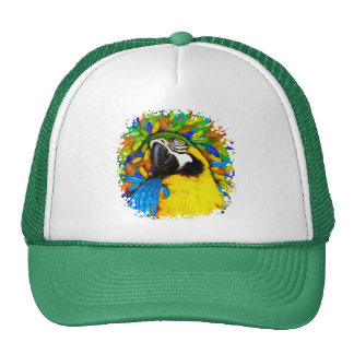 Gold and Blue Macaw Parrot Fantasy Hats