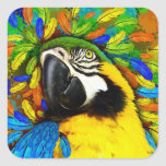 Gold and Blue Macaw Parrot Fantasy Square Stickers