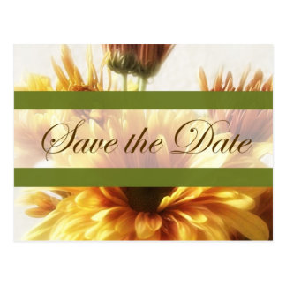 Gold and Brown Chrysanthemums 1 Save the Date Wedd Postcard