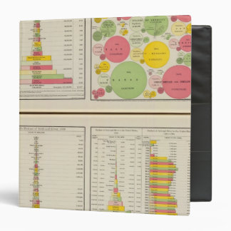 Gold and Silver Statistical Charts 3 Ring Binders