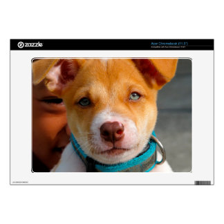 Gold and White Puppy Dog with Blue Collar Decal For Acer Chromebook