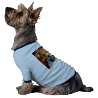 Gold and White Puppy Dog with Blue Collar Dog Tee