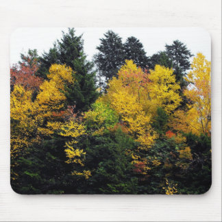Gold Autumn Trees Mouse Pad
