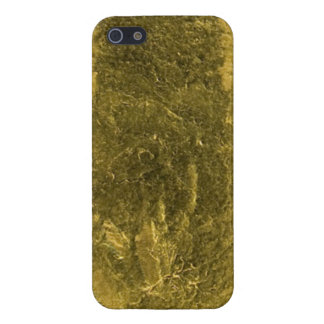 Gold Bar iPhone Case iPhone 5 Cover
