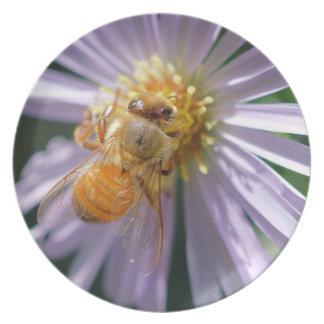 Gold Bee on a White Flower Melamine Plate