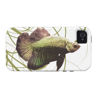 Gold Betta Siamese Fighting Fish iPhone 4/4S Cases