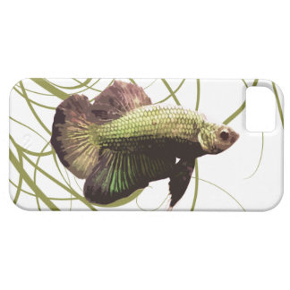 Gold Betta Siamese Fighting Fish iPhone 5 Case
