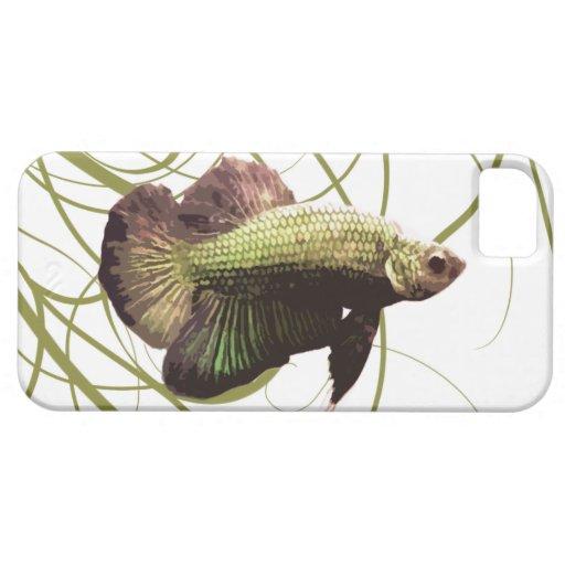 Gold Betta Siamese Fighting Fish iPhone 5 Case