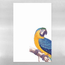 Gold Blue Macaw Parrot Dry Erase Magnetic Sheet