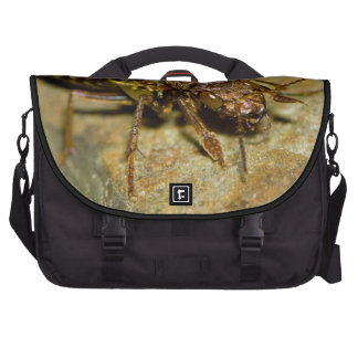 Gold Brown Rove Beetle Bag For Laptop