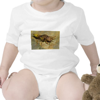 Gold & Brown Rove Beetle Bodysuits
