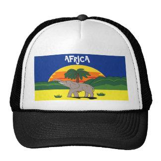 Gold Coast Elephant and Palm Tree Hat