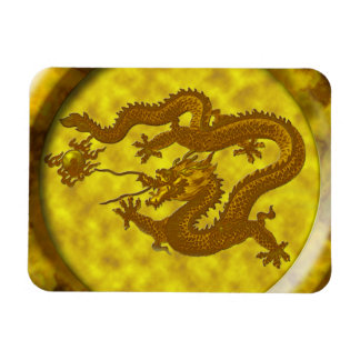 Gold Coin Dragon Magnet