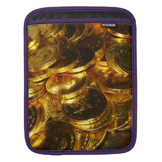 GOLD COINS 1 SLEEVE FOR iPads