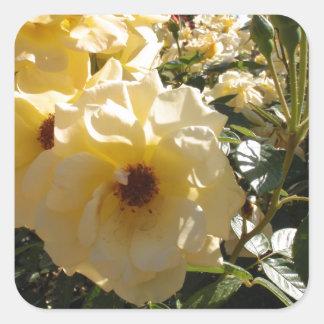 Gold Dot Roses Square Sticker