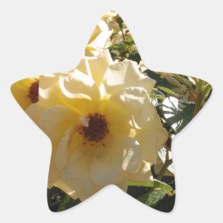 Gold Dot Roses Star Sticker
