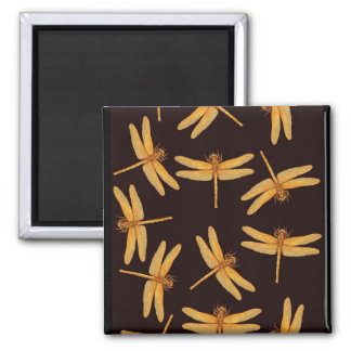 Gold Dragonflies Magnet
