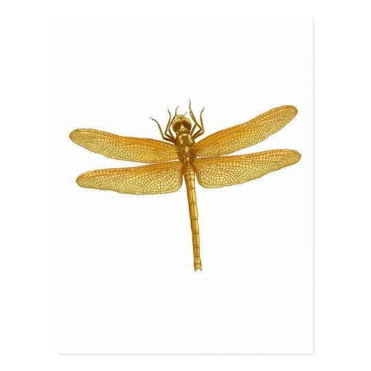 Gold Dragonfly Postcard