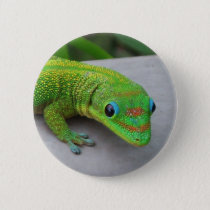 Gold Dust Day Gecko – Audition and Get Some Gecko Pinback Button