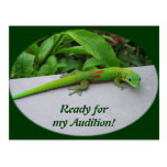 Gold Dust Day Gecko – Audition and Get Some Gecko Post Cards