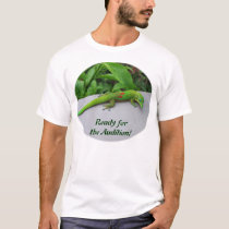 Gold Dust Day Gecko – Audition and Get Some Gecko T-Shirt