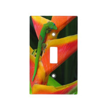 Gold Dust Gecko on Heliconia Light Switch Cover