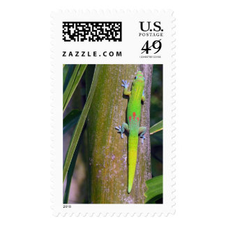 Gold Dust Gecko Postage Stamps