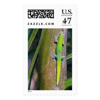 Gold Dust Gecko Stamp
