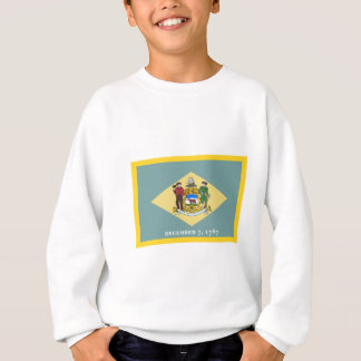 Gold Edge Delaware Flag Sweatshirt