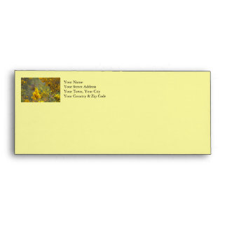Gold Finch and Yellow Flowers Envelope